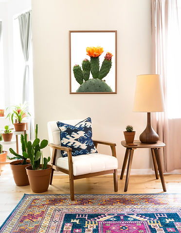 BloomingPricklyPear_Room.jpg