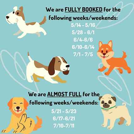 Teal Dog Illustration Quote Love Your Pe