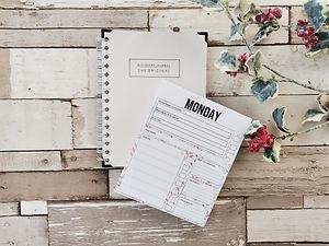 Anxiety Pad and Diary.jpg