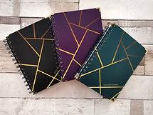 discovery-journal-collection_edited.jpg