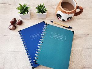 Original-Mental-Health-Diary.jpg