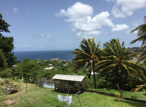 Elective Diaries - St Vincent & The Grenadines
