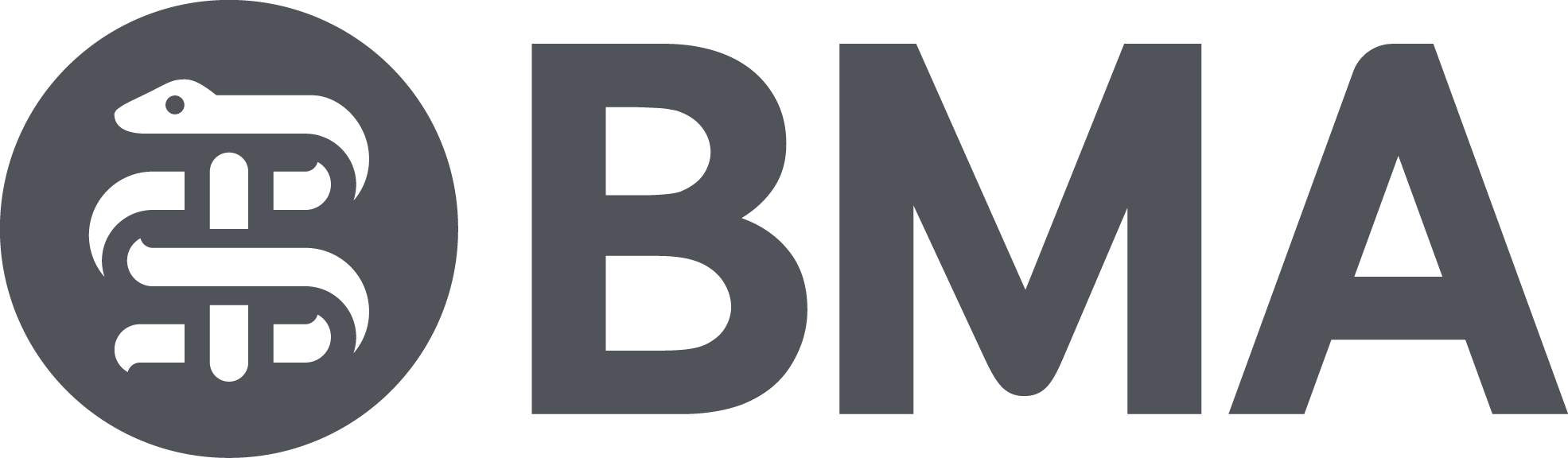 BMA Race Equality Summit