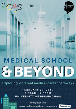 Medical School & Beyond