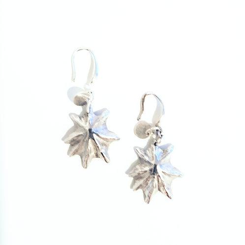 Stars of Australia earrings