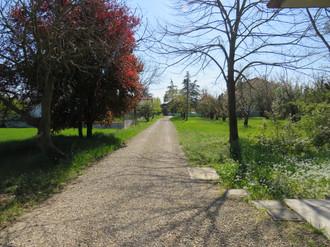 Giardino Villa paola