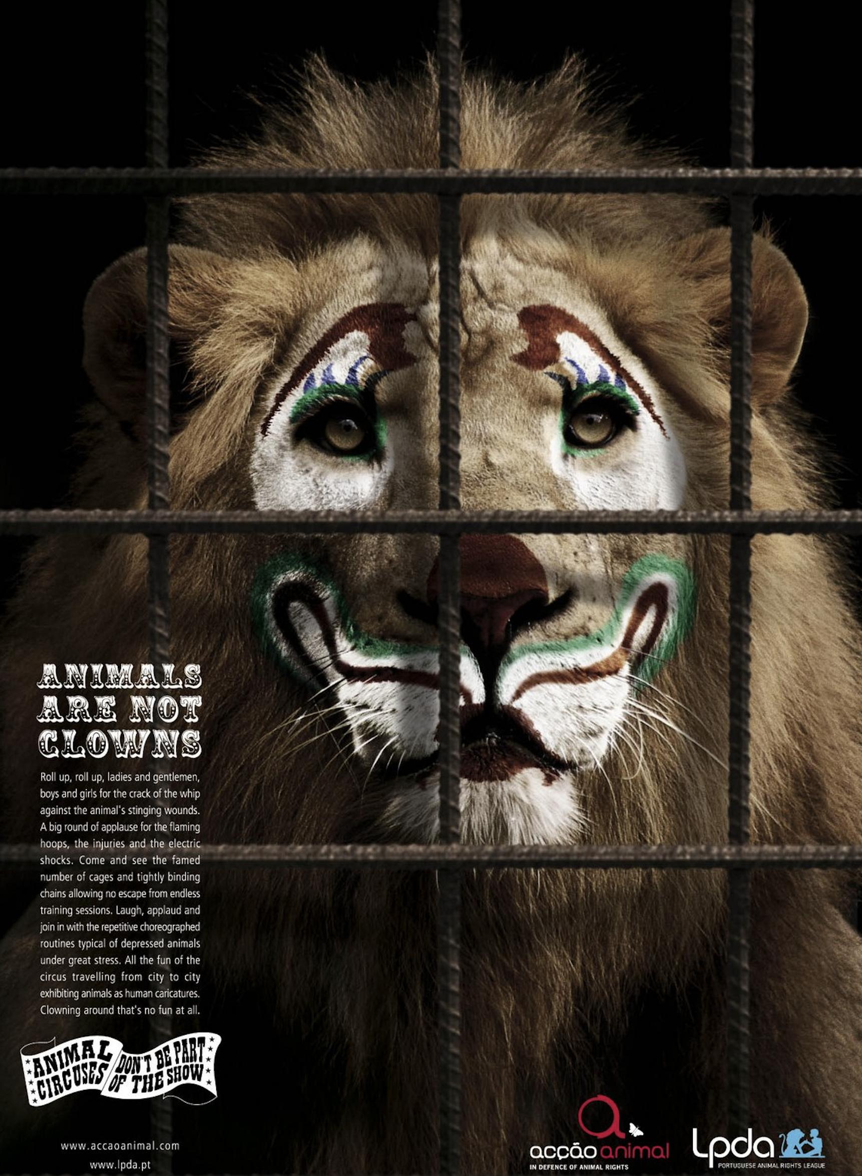 STOP a los Circos