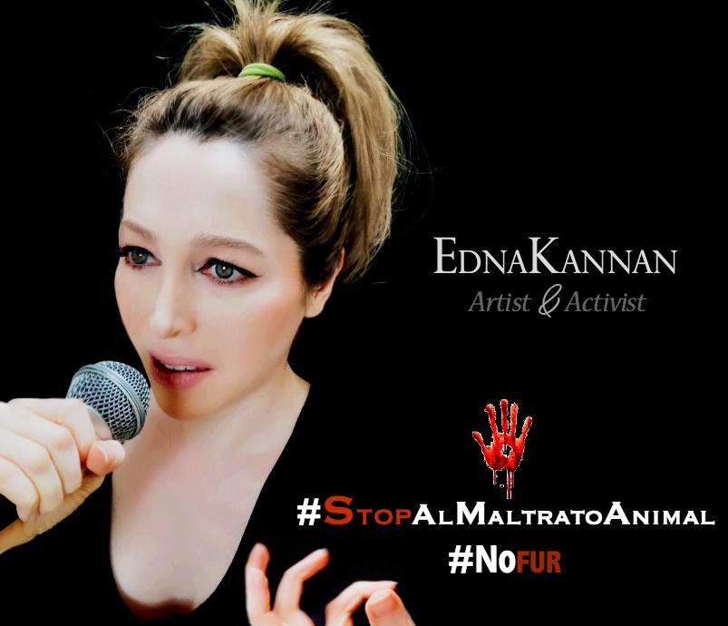 STOP AL MALTRATO
