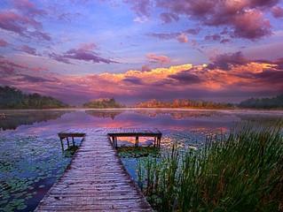 A Morning Visit at the Lake