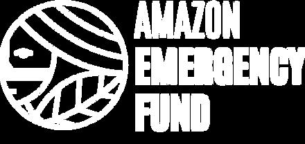 AEF logo ing2-01.png