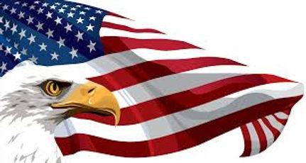 eagle and flagg.jpg