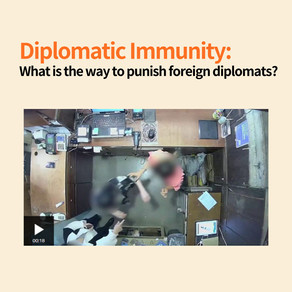 Diplomatic Immunity: What is the way to punish foreign diplomats?