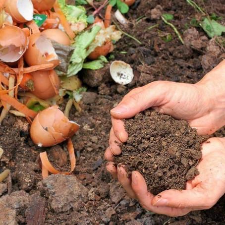 Guía completa para compostar.