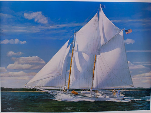 Summer Sail
