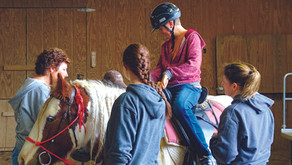 Working to Reconnect Individuals with the Healing Power of Horses.