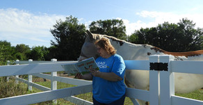 Storytime & Horses, a Perfect Pair!