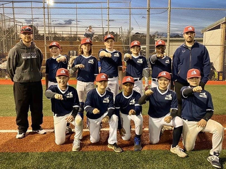 Sox 12U Lewis Takes Snowball Classic in Magee
