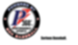 P360 Performance Sports logo
