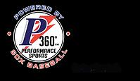 P360 PERFORMANCE SPORTS-SERIOUS BASEBALL