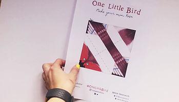 Create your own Little Bird!