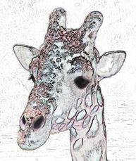 GiraffeEffects.jpg