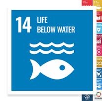 Localising the SDGs: Life Below Water
