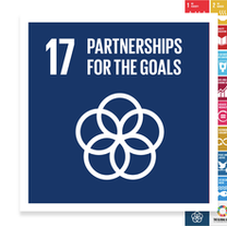 Localising the SDGs: Partnerships for the Goals