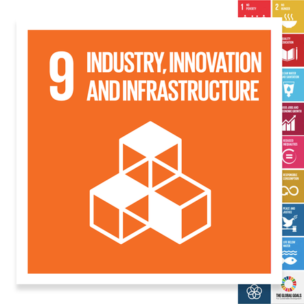 Localising the SDGs: Industry, Innovation and Infrastructure