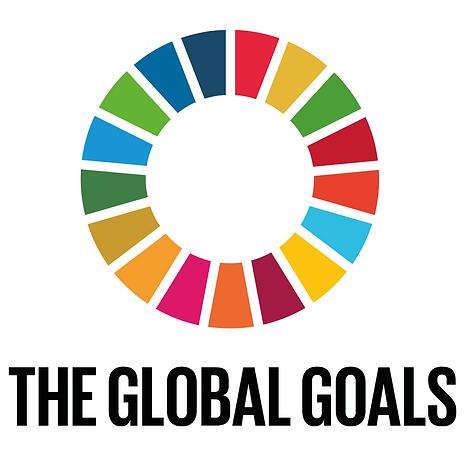 ANHCA and the SDGs