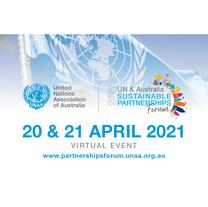 UN Virtual Event