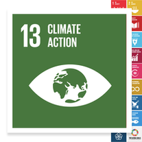 Localising the SDGs: Climate Action