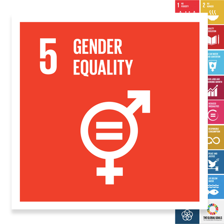 Localising the SDGs: Gender Equality