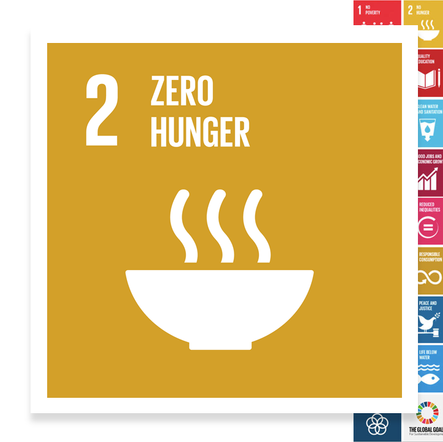 Localising the SDGs: Zero Hunger