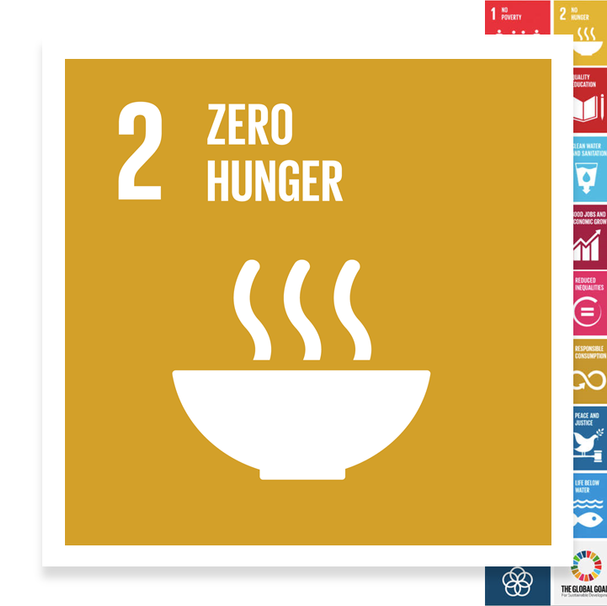 Localising the SDGs: Zero Hunger