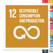 Localising the SDGs: Responsible Consumption and Production