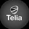 Trollkarl Göteborg Telia