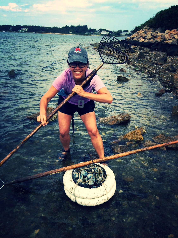 Clamming on Cape Cod