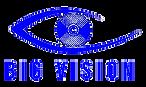 Big Vision - T.png
