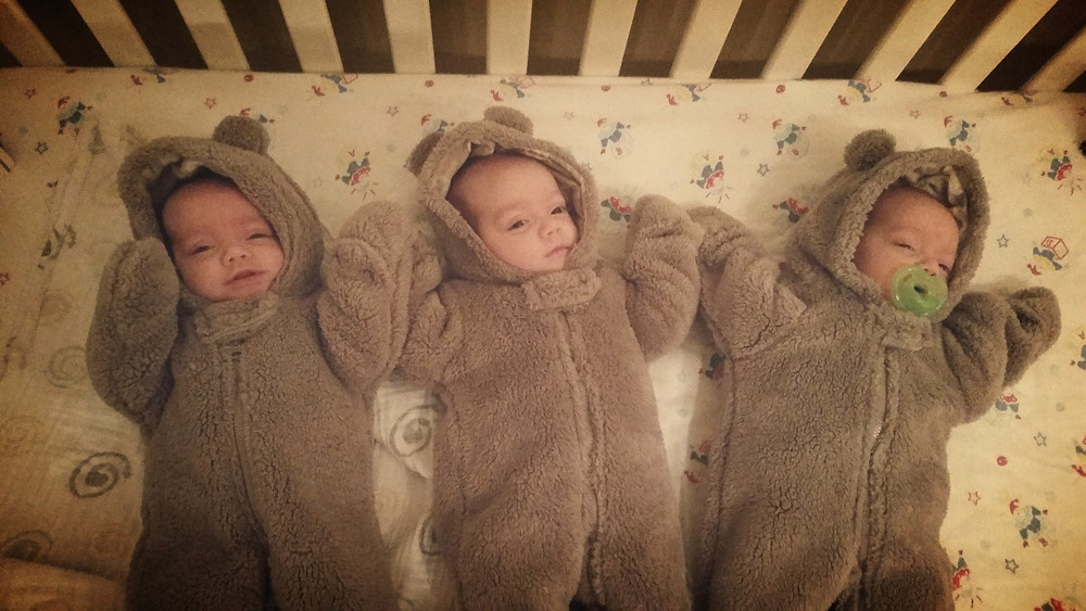 Three tiny bears with human faces - an adorable nightmare.