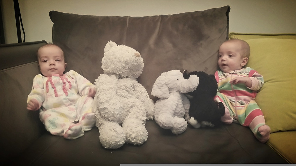 We've replaced their sister with a stuffed bear. Let's see if they notice.