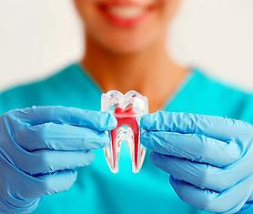 зуб Niko-Dent.png