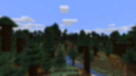 MC14_Redwoods_01.jpg