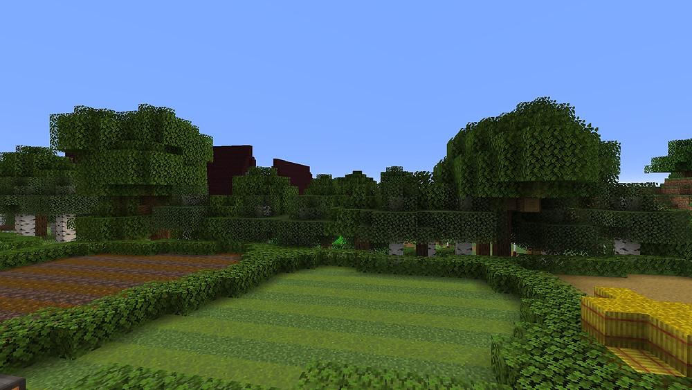 Farmland or field in a game called Minecraft