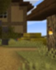 Minecraft Wilderness