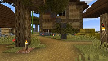 Minecraft Wilderness 5