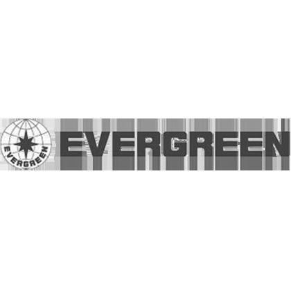 evergreen copy copy