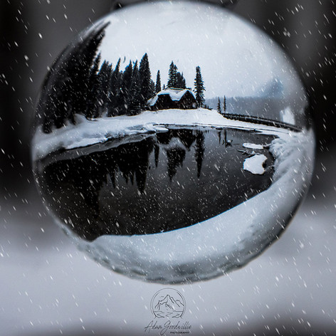 Snow-Globe_for-web.jpg
