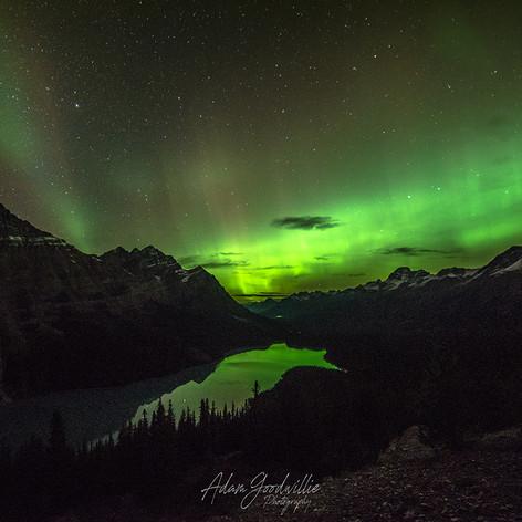 Peyto Lake Aurora Beams