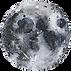 Moon_3 (1)tiny.png
