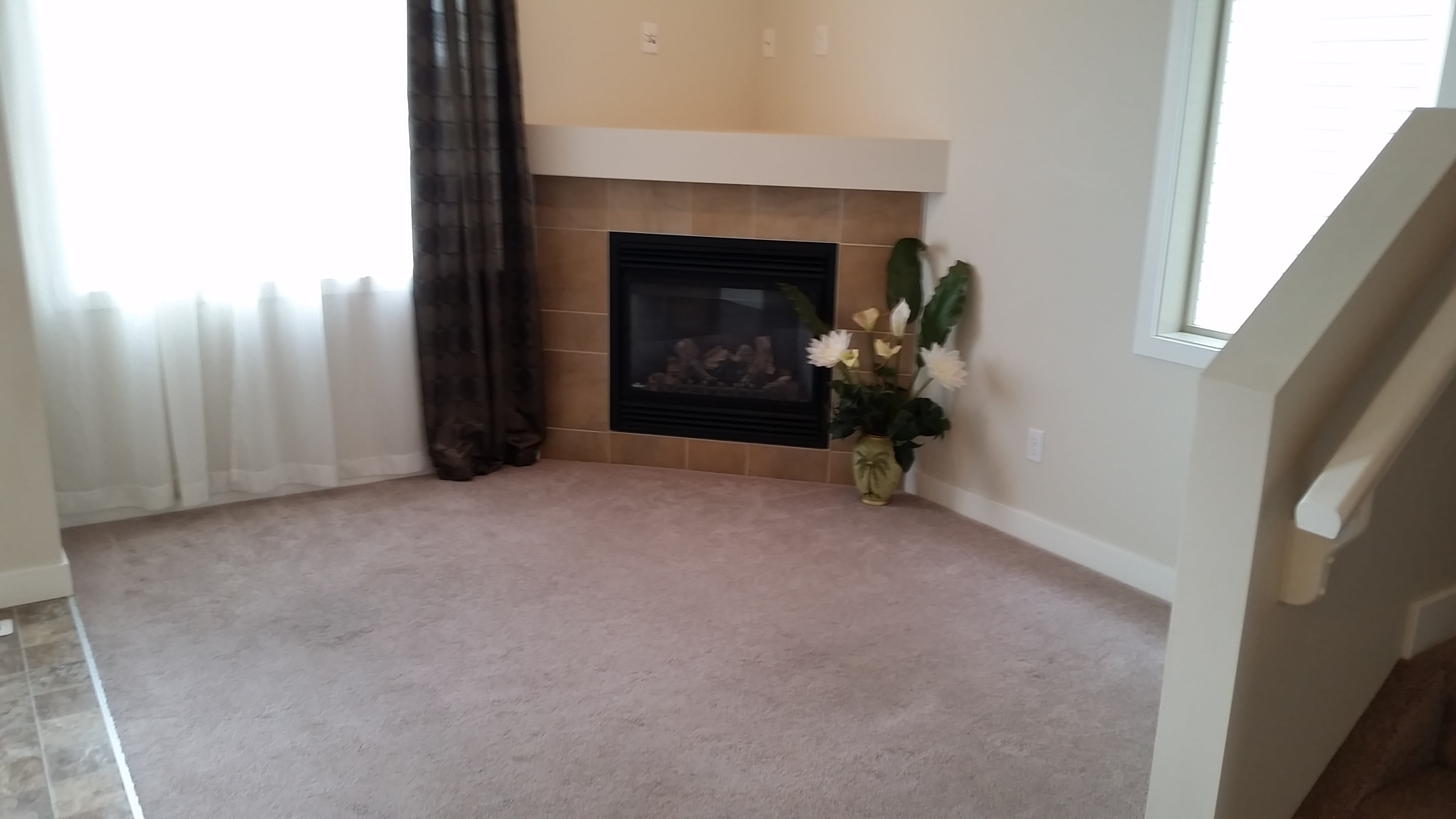 Gas Fire Place